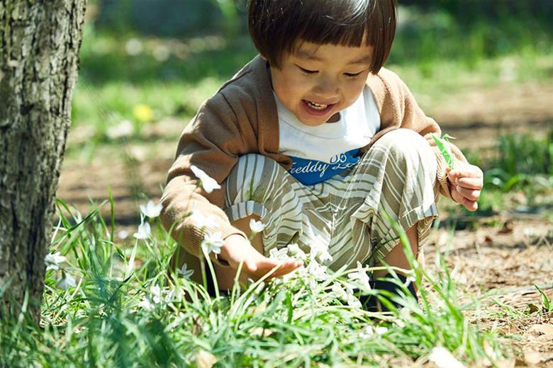 公園ピクニックがもっと楽しくなる!身近なものでできる外遊びアイディア【虫のかくれんぼ】