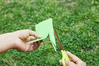 2つ折りにした折り紙にハサミを入れ、バッタの形に切る。図鑑や画像を見ながらつくるとよい。