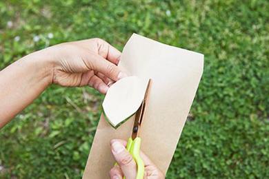 枯葉そっくりのコノハチョウは、茶封筒を切ってつくる。端からハサミを入れ、蝶の羽の形に切る。図鑑や画像を見ながらつくるとよい。