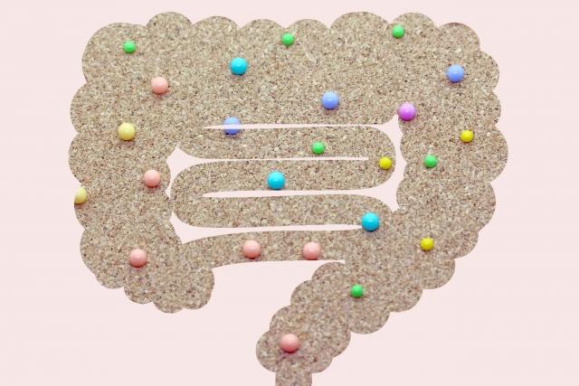 腸活 水溶性食物繊維